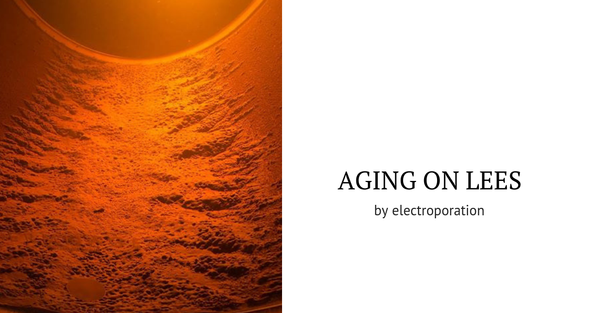 Aging on lees time reduction of a Chardonnay wine by electroporation