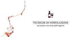 Tecniche di vinificazione per produrre vini senza solfiti aggiunti