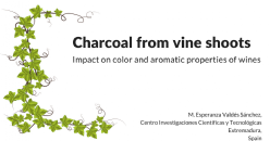Application of activated charcoal made from vine shoots. Relationship between their physicochemical and textural characteristics and the impact on color and aromatic properties of wines