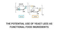 The potential use of yeast lees (1-3, 1-6)-beta-glucans as functional food ingredients