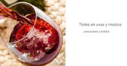 Précurseurs des thiols dans les raisins et les moûts et leur révélation dans les vins: quelles nouvelles?