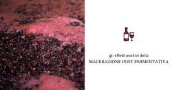 La Macerazione Post-fermentativa a Freddo (PFM): esperienze con differenti varietà d'uva