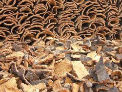 Efecto de la estabilización del corcho sobre la hermeticidad de los tapones naturales: pruebas de embotellado