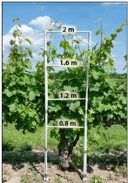 Tecnologías para una correcta aplicación de los productos fitosanitarios en el viñedo