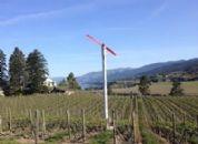 Viticulture protégée : optimisation du climat pour la production de vins de qualité