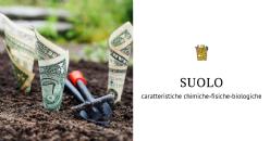 Caractéristiques chimiques, physiques et biologiques du sol d'un vignoble