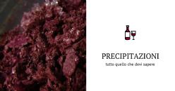 La stabilità colloidale dei vini rossi