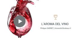 L'evoluzione nel tempo dell'aroma del vino