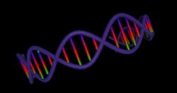DNA to Define Your Wine Tastes