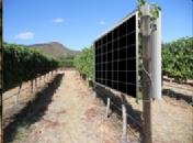 PVGIS: herramienta de cálculo de energía solar fotovoltaica online gratuita para optimizar la captación de luz en viticultura