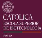 8ª Edição da Pós-graduação em Enologia (2017-2019)
