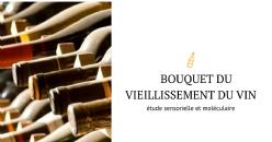 Déchiffrer le bouquet du vieillissement du vin : étude sensorielle et moléculaire d'un concept olfactif complexe
