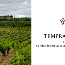 Variability of Tempranillo grape quality within the Ribera del Duero DO (Spain) and relationships with climatic characteristics