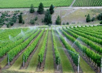 Some good news about water and wine