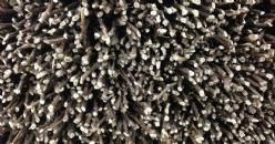 Utilización del ácido poliaspártico para la fertilización de la vid
