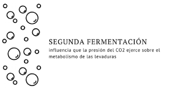 Analizan el efecto de la presión del C02 en el aroma de los vinos espumosos