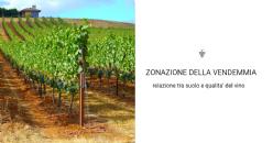 Mappatura della conduttivita' elettromagnetica e zonazione della vendemmia: comprensione della relazione tra suolo e qualita' del vino