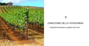 Conductividad electromagnética, mapeo y zonificación de la vendimia para descifrar la relación entre suelo y calidad del vino