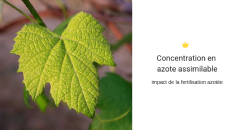 Impact des conditions pédoclimatiques sur la concentration en azote assimilable de la levure présente dans le moût et sur la valorisation de la pulvérisation d'azote foliaire