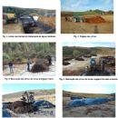 Reciclagem dos resíduos provenientes da atividade vitivinícola na região Demarcada do Douro através da compostagem