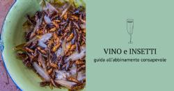 Abbinamento fra vino e alimenti a base di insetti