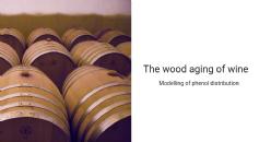 Modellazione della distribuzione fenolica e dell'accesso di ossigeno nel vino in fusti di rovere