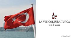 INDAGINE SULLA PIATTAFORMA AMPELOGRAFICA TURCA E APPROFONDIMENTO DI ALCUNI CASI DI STUDIO