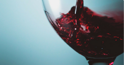 ¿Cómo influye la composición de la uva en las características sensoriales del vino?