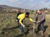 """1° incontro del cantiere """"scuola in vigneto"""" con i profughi stranieri"""