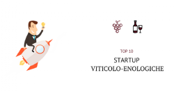 top 10 start up viticolo enologiche