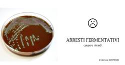 Arresti fermentativi - cause e rimedi
