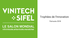 21st Innovation Trophies: Vinitech-Sifel Reveals the Winners!