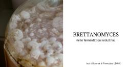I lieviti Brettanomyces: da organismi alterativi a preziosi collaboratori delle fermentazioni industriali