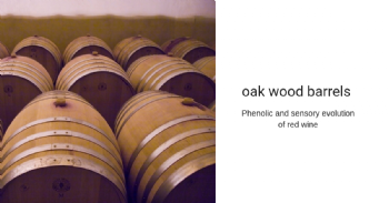 Phenolic and sensory evolution of a red wine from Jaen grape variety aged in different kinds of oak wood barrels