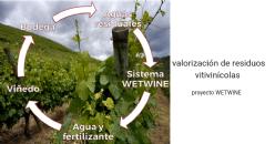 Proyecto Wetwine - Sistema de Valorización de Aguas Residuales de Bodega Basado en Humedales Artificiales