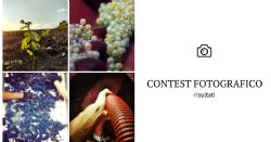 Contest fotografico: Enologia 2018
