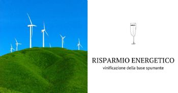 Risparmio energetico in vinificazioni base spumante: gestione di lievito e temperatura