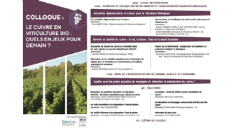 Le cuivre en viticulture bio, quels enjeux pour demain ?