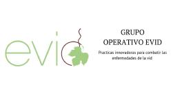 Grupo Operativo EVID: Prácticas innovadoras para combatir las enfermedades de la madera de la vid