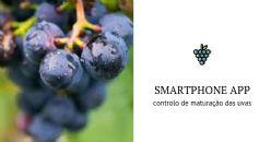 New technology to track grape development for better harvest