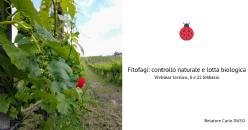 Webinar (formazione online): Controllo naturale e lotta biologica
