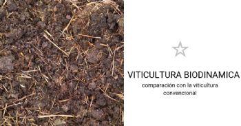 La viticultura biodinámica y convencional responden de manera diferente al clima y a los patógenos