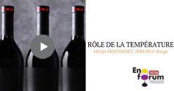 Quel est le rôle de la température dans l'évolution du vin dans le temps ?