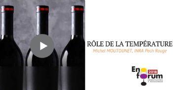 ¿Cuál es el papel de la temperatura en la evolución del vino en el tiempo?