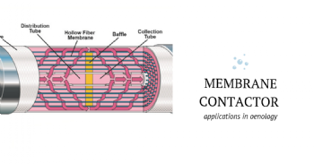 Gestione dei gas disciolti in enologia mediante contattore a membrana: stato dell'arte
