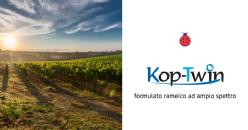 KOP-TWIN: l'equilibrio del Solfato Tribasico (TBCS), la prontezza d'azione dell'idrossido