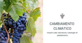 La vite del 2099, impatti del cambiamento climatico sulla viticoltura trentina