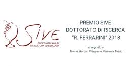 Vincitori 3° edizione premio SIVE dottorato di ricerca 2018