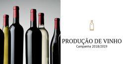Produção de Vinho em Portugal   Campanha 2018/2019