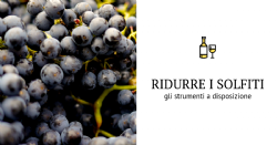 Come intervenire per ridurre le solfitazioni in diverse tappe della vinificazione
